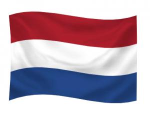 de voor- en nadelen van zzp nederland
